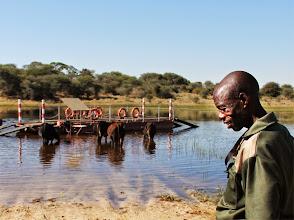 Photo: De veerman van de Kalahari