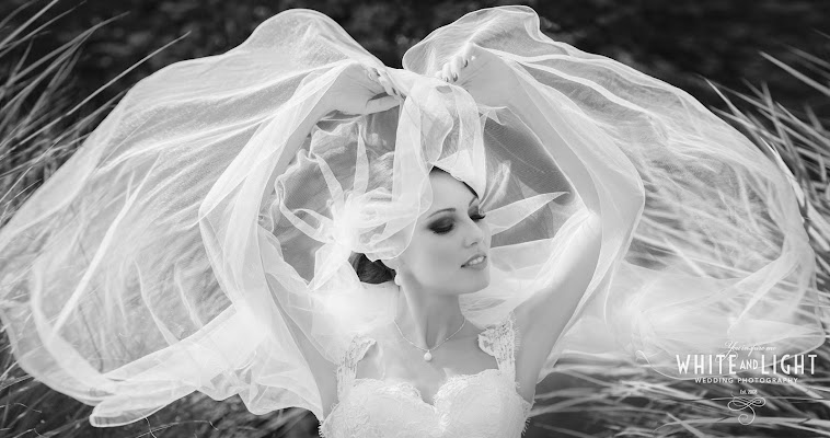 Hochzeitsfotograf Andrey Nikolaev (munich). Foto vom 15.06.2017