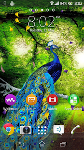 Peacock Live Wallpaper - náhled