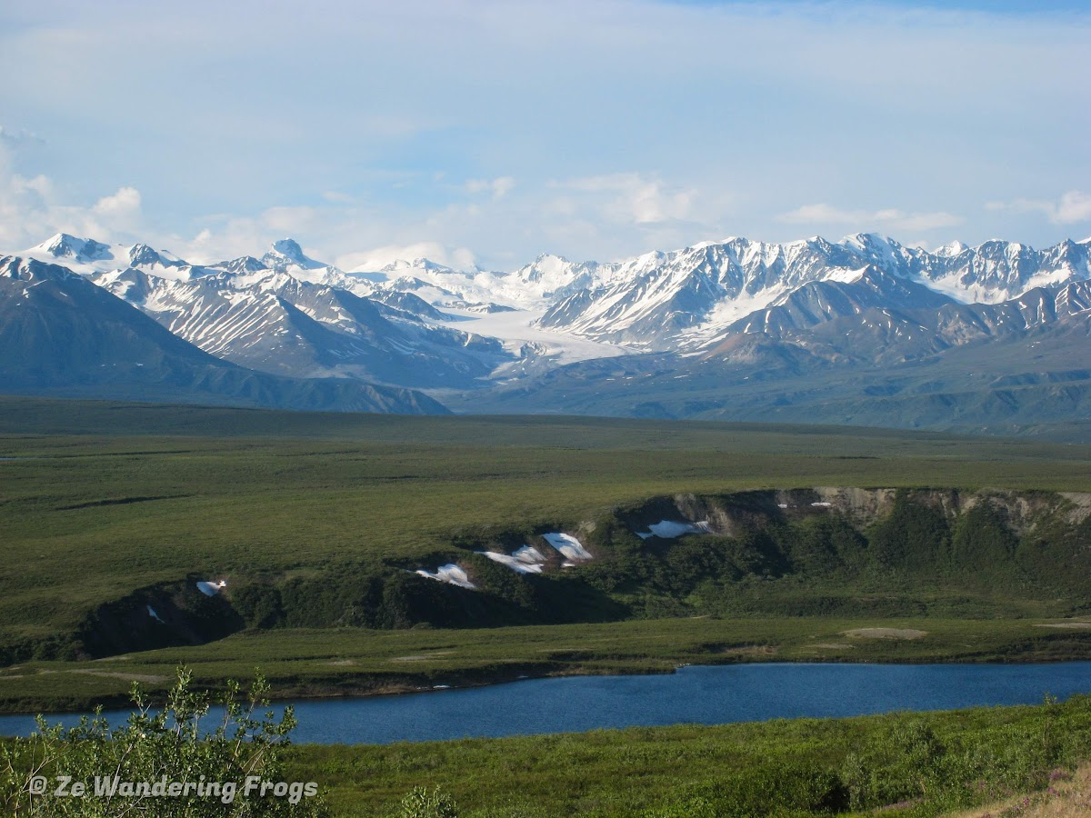 USA Alaska Itinerary 10 Days // Driving along Denali Highway