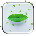 Note5 Leaf Magic Touch LWP icon