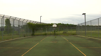 Photo: The prisoners basketball court is starting to be reclaimed by nature.