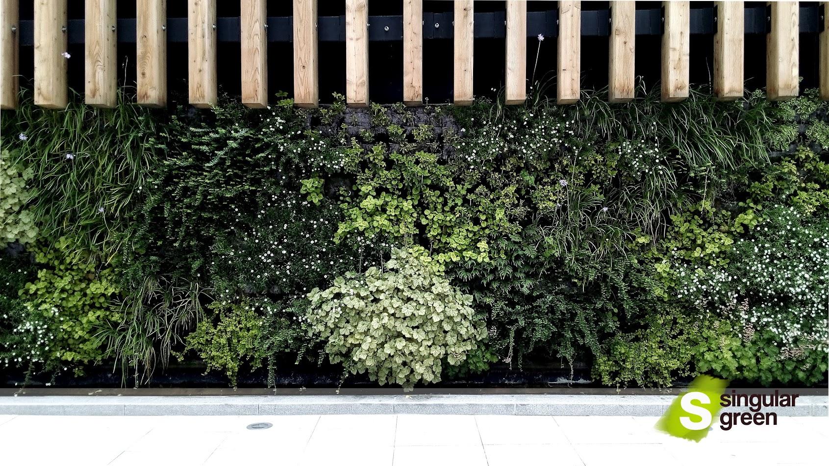 Jardinería vertical en Bilbao