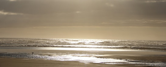 Photo: I really enjoyed photographing the early evening sea...I want to paint this!