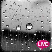 Glass Raindrops Live Wallpaper