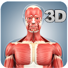 Muscle Anatomy Pro. icon