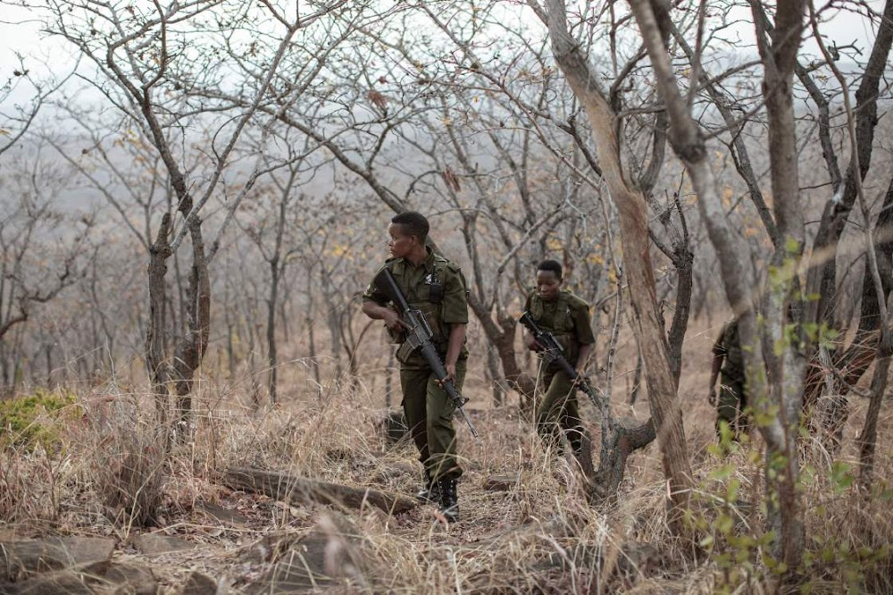 Zimbabwe's women-only rangers take back their lives while fighting poaching