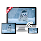Tải Game Screen Miracast Display