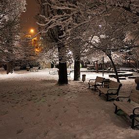 SILENCE AND SNOW by Nihan Bayındır - City,  Street & Park  City Parks ( love, winter, peace, snow, romantic, lovely, landscape, passion,  )