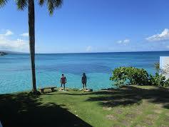 Caribbean Life (S8E7)