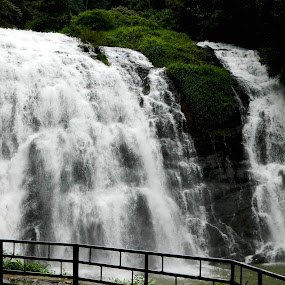 by Souvik Nandi - Nature Up Close Water