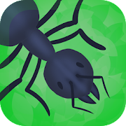 Ant Colony - Ant Simulation