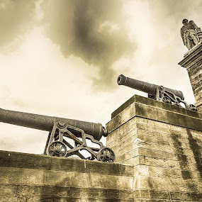 Admiral Lord Collingwood Monument by Davey T - Buildings & Architecture Statues & Monuments ( statue, tyne, tynemouth, monument, canons )