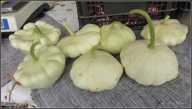 Photo: Dovleci  (Cucurbita.....) - din Turda, Parcul Central, AgroFest - 2018.09.30
