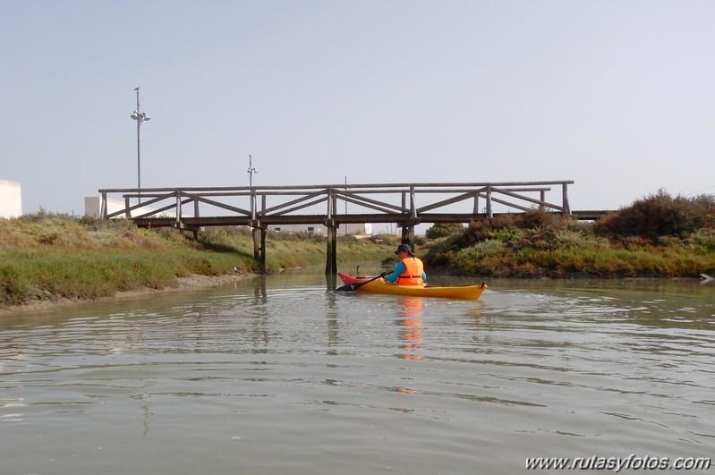 La Magdalena - Caño del Carrascón - Gallineras - Caño de Sancti Petri