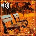 Autumn Park HD icon