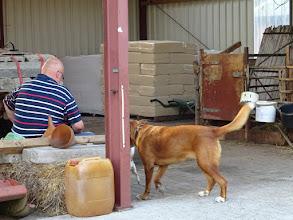 Photo: Huiskeuring bij familie de With. Vijf geiten en vier bokken zijn voor inspectie aangeboden. Ruim 20 geitenliefhebbers waren tijdens deze gastvrije avond aanwezig.