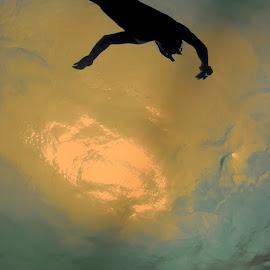 Shark by Melika Mousavi - Animals Sea Creatures ( #aquarium, #light, #silhouette, #shark, #antalya )