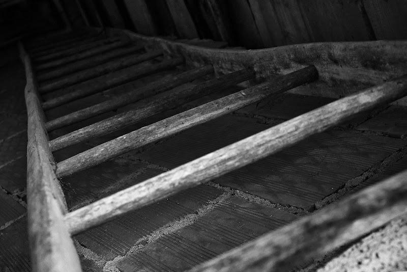 La vecchia scala a pioli di Sierra0394