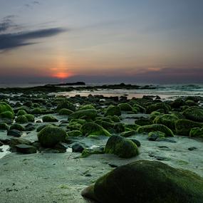green rock by Rob De Eduardo - Landscapes Sunsets & Sunrises ( beaches, sunset, long exposure, landscape, rocks )