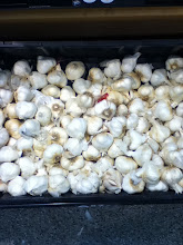 Photo: The last item I needed was a clove of garlic.