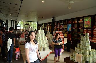 Photo: Boh tea plantations