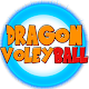 Dragon Voley Ball