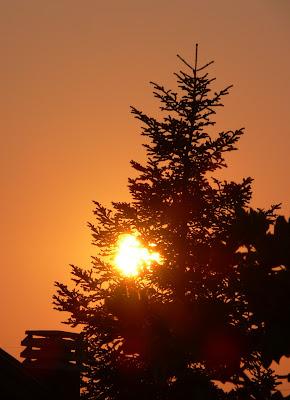 Magic Sun di PhotoLoris