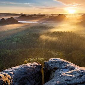 Kleiner Winterberg by Evžen Takač - Landscapes Sunsets & Sunrises ( inversion, national park, mountains, fog, autumn, czech republic, forest, sunrise, saxon switzerland, rays, sun )