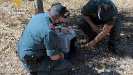 Una pareja de guardias civiles ayuda al gato,