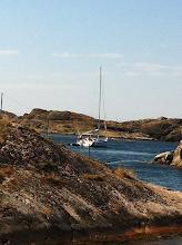 Photo: Sailers.