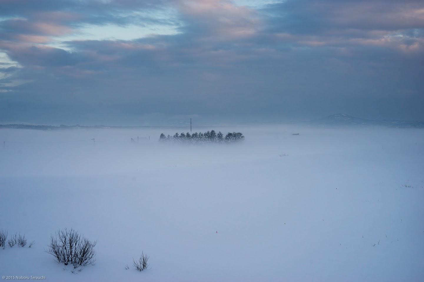霧に包まれた風景