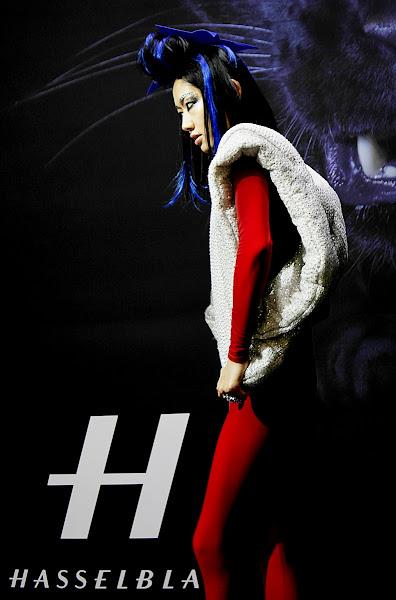 Photo: Hasselblad model