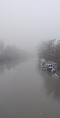 un Po di nebbia... di mariasacchi_