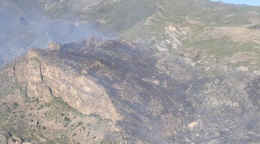Calcinadas 25 hectáreas del campo de maniobras de La Legión en un incendio