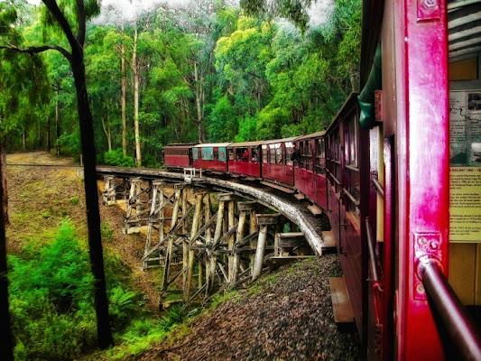 Train trip di feddy