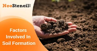 Factors Involved In Soil formation