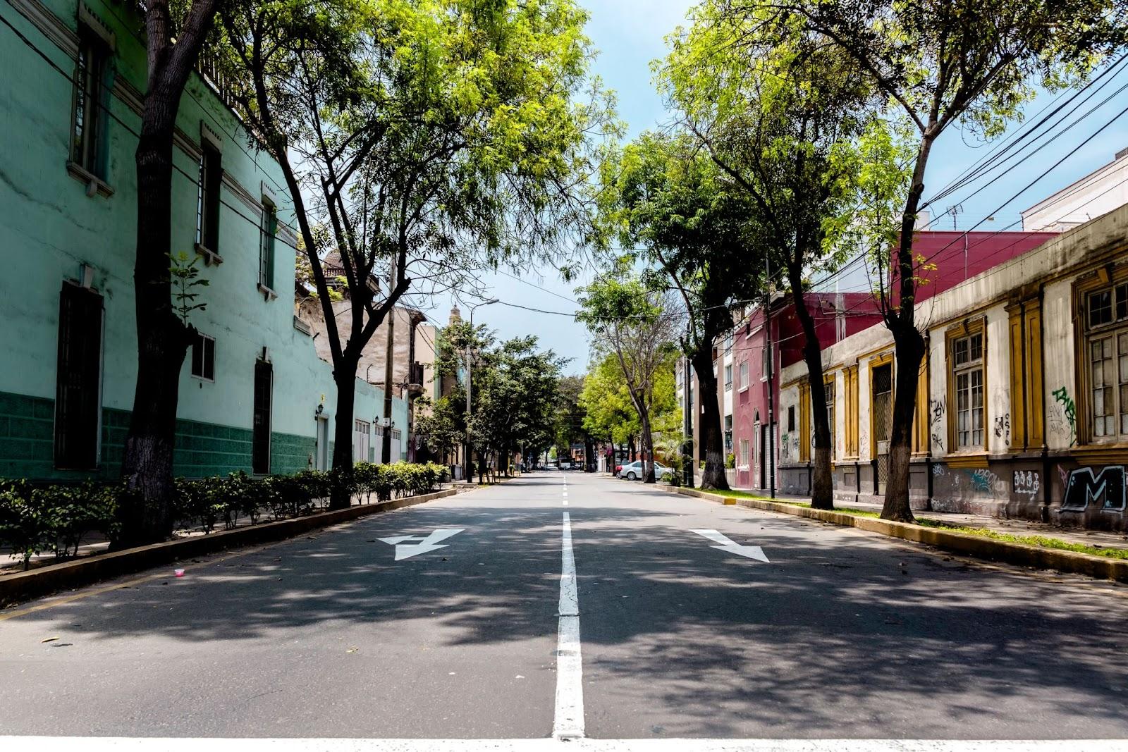 Empty neighbourhood street