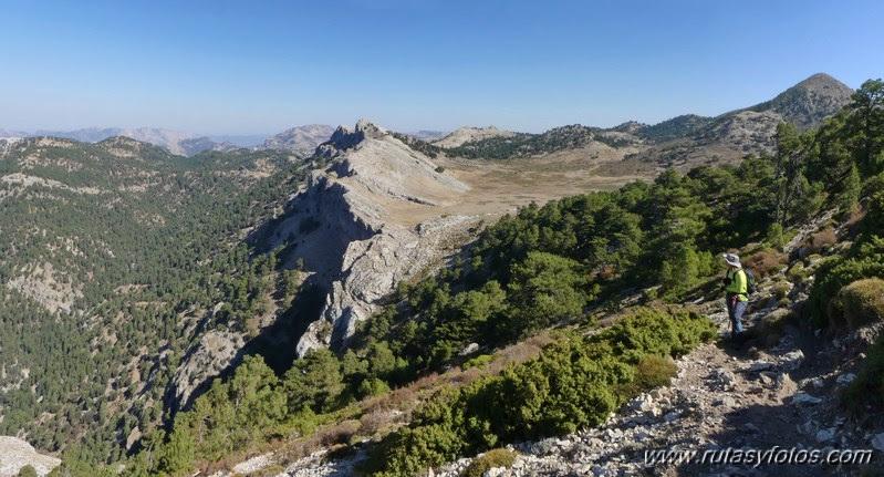 Pico Empanadas