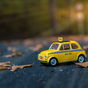 Little Taxi by Baltă Mihai - Artistic Objects Toys ( forest, taxi, fiat, model, fotoworld, toy )