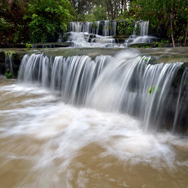 Levels by Geoffrey Wols - Nature Up Close Water ( forest, waterfall, bush, trees,  )