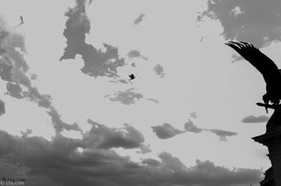 Il doppio volo di cla_cim