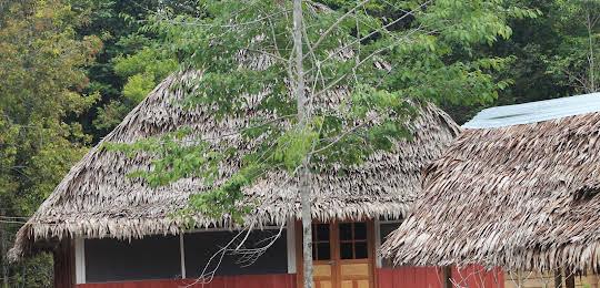 Lupuna Lodge