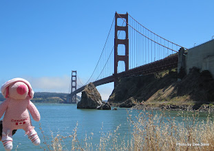 Photo: (Year 3) Day 10 - Pippa at the Golden Gate Bridge in San Fran