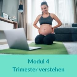 Prenatal Yoga Modul 4