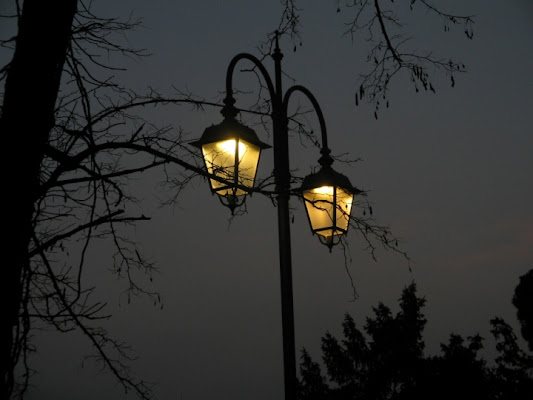 The soul of street lamps... di enrylind