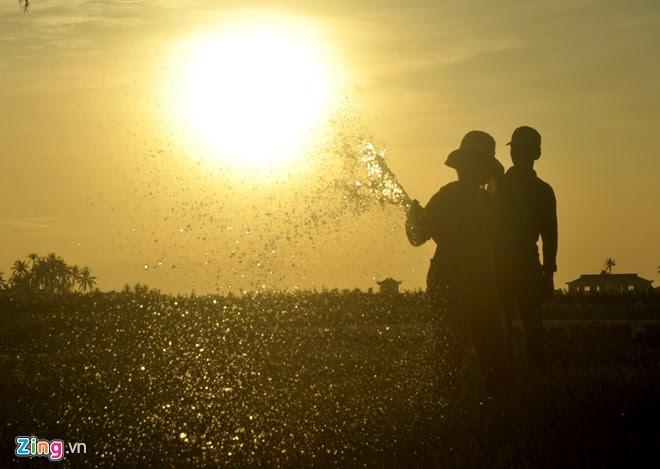 Chồng kéo đỡ ống nhựa dẫn nước, vợ bơm nước tưới ruộng hành dưới ánh bình minh.