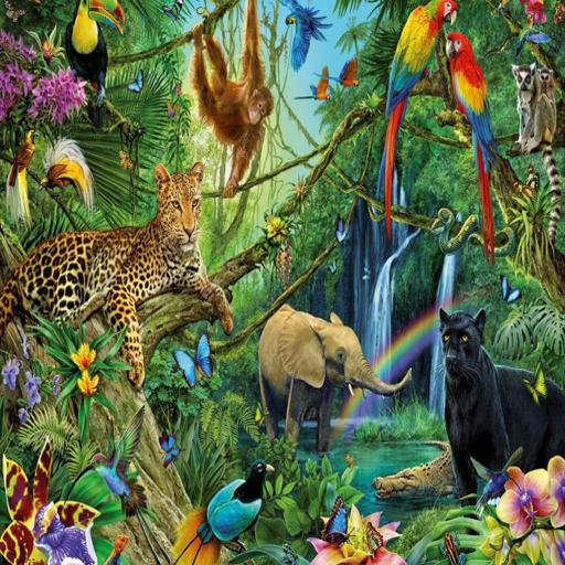 App Insights: Jungle Animal Sounds | Apptopia