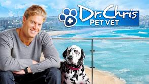 Dr. Chris: Pet Vet thumbnail