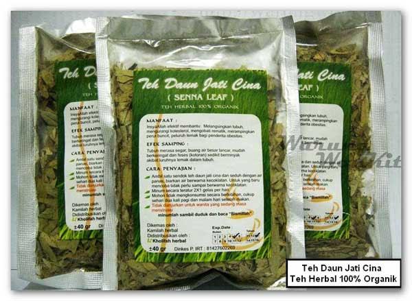 Pelangsing Herbal Alami - Daun Jati Cina